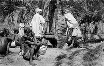 Roger-Viollet | 741045 | R'statts, puisatiers du Sud de l'Algérie, vers 1910. | © CAP / Roger-Viollet