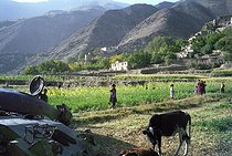 Roger-Viollet   748917   Second war in Afghanistan between the USA and the Northern Alliance against the Taliban following the September 11, 2001 attacks. Farmers near a tank destroyed during the fights against the Soviets in the Panshir Valley. Afghanistan, September-October 2001.   © Jean-Paul Guilloteau / Roger-Viollet