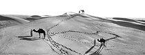 Roger-Viollet | 754287 | Meharies in the dunes of Algerian Sahara. | © Léon & Lévy / Roger-Viollet