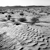 Roger-Viollet | 788032 | Desert in the South, after Tataouine. Tunisia, February 1965. Photograph by Hélène Roger-Viollet (1901-1985). | © Hélène Roger-Viollet / Roger-Viollet