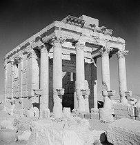 Roger-Viollet | 817688 | The Temple of Baalshamin. Palmyra (Syria), November 1953. | © Hélène Roger-Viollet / Roger-Viollet
