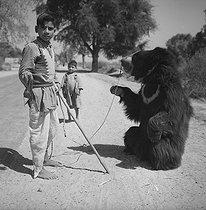 Roger-Viollet | 826548 | Bear tamer near Agrâ (Uttar Pradesh, India). 1961. Photograph by Hélène Roger-Viollet (1901-1985). | © Hélène Roger-Viollet / Roger-Viollet