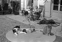 Roger-Viollet | 858347 | Louis-Ferdinand Céline (1894-1961), French writer, at his place with his pets. Meudon (France), 1955-1956. | © Bernard Lipnitzki / Roger-Viollet