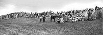 Roger-Viollet | 865258 | Sahara. Around 1900. | © Léon & Lévy / Roger-Viollet