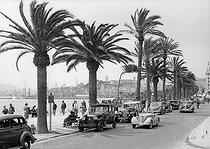 Roger-Viollet | 865750 | The Promenade de la Croisette. Cannes (France). | © CAP / Roger-Viollet