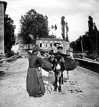 Roger-Viollet | 880952 | Farmer and her donkey in Beynac. France, around 1890. | © Roger-Viollet / Roger-Viollet