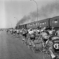 Roger-Viollet | 888412 | 1964 Tour de France. | © Roger-Viollet / Roger-Viollet