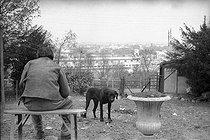 Roger-Viollet | 894077 | Louis-Ferdinand Céline (1894-1961), French writer. Meudon (Hauts-de-Seine), 1955-1956. | © Bernard Lipnitzki / Roger-Viollet