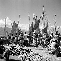 Roger-Viollet | 906574 | Market at the port. Port-au-Prince (Haïti), February 1959. | © Roger-Viollet / Roger-Viollet