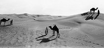 Roger-Viollet | 941655 | Algerian Sahara. Mehara in the desert with the setting sun. | © Léon & Lévy / Roger-Viollet