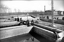 Roger-Viollet | 944123 | Le Mans (Sarthe). Etablissement des Eaux à l'Epau : arrivée des Eaux dans les bassins dégrossisseurs, vers 1900. | © CAP / Roger-Viollet