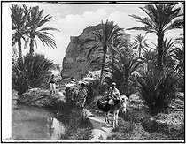 Roger-Viollet | 973897 | Oasis. Tunisia, 1900. | © CAP / Roger-Viollet