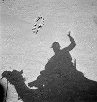 Roger-Viollet | 977459 | SAHARA - A MEHARIST'S SHADOW | © Gaston Paris / Roger-Viollet