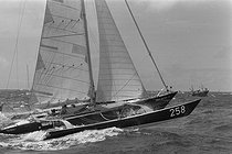 Roger-Viollet | 981367 | The  Great Britain IV  trimaran at the beginning of the Transatlantic race in double. May 1979. | © Jacques Cuinières / Roger-Viollet