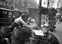 Roger-Viollet | 983431 | Greengrocer. Paris, circa 1925. | © Albert Harlingue / Roger-Viollet