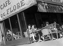 Roger-Viollet | 983618 | Paris, VIth arrondissement. Terrace of the café de Flore. Around 1948. | © Roger-Viollet / Roger-Viollet