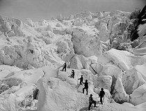 Roger-Viollet | 988630 | Ascent of the Grands-Mulets. Chamonix (France). | © Neurdein / Roger-Viollet