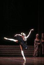 Roger-Viollet   1030418   Swan Lake, act III   © Colette Masson / Roger-Viollet