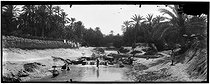Roger-Viollet | 1032022 | Women washing their clothes in the wadi | © Léon & Lévy / Roger-Viollet