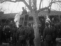 Roger-Viollet   1032086   First Balkan War - Hanging   © Maurice-Louis Branger / Roger-Viollet