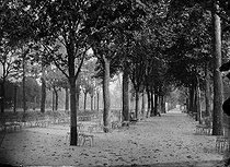 Roger-Viollet   1033602   The Champs-Elysées park, northwestwards. Paris (VIIIth arrondissement), 1868. Photograph by Charles Marville (1813-1879). Bibliothèque historique de la Ville de Paris.   © Charles Marville / BHVP / Roger-Viollet