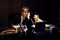 Roger-Viollet   1040719   Jean-Paul Belmondo   © Jean-Pierre Couderc / Roger-Viollet