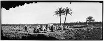 Roger-Viollet | 1046499 | Sahara - Meeting in an Arab cemetery | © Léon & Lévy / Roger-Viollet