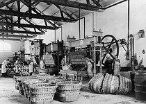 Roger-Viollet | 1064157 | Fabrication du vin de Champagne, pressurage du raisin. Epernay, 1935. | © Jacques Boyer / Roger-Viollet