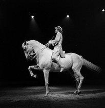 Roger-Viollet | 1073302 | Circus : tamed horse. France, circa 1935. | © Gaston Paris / Roger-Viollet
