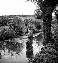 Roger-Viollet   1086312   FRANCE - NETTOYAGE D'UNE RIVIERE   © Tony Burnand / Roger-Viollet