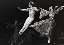 Roger-Viollet | 1376346 | Rudolf Nureyev (1938-1993), Russian lead dancer of the Paris Opera, director of ballet and choreographer, at a performance of  La Belle au bois dormant  (Sleeping Beauty), with Margot Fonteyn (1919-1991), British dancer, at the Opéra Garnier. Paris (IXth arrondissement), 13 May 1971. Photograph by André Perlstein (born in 1942). | © André Perlstein / Roger-Viollet