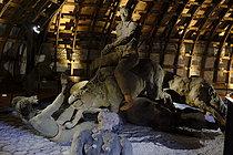 Roger-Viollet | 1383281 | Ousmane Sow (1935-2016).  The Battle of Little Bighorn  series. The charge of Two Moonsé. Fortress of Mont-Dauphin (Hautes-Alpes, France), Centre des Monuments Nationaux, 2021. | © Béatrice Soulé / Roger-Viollet